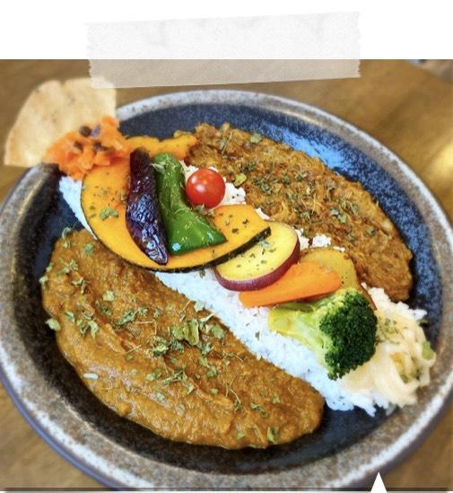 .こだわりハチカレー と パキスタン風無水カレーに5種の素揚げ野菜