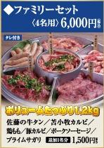 ファミリー焼肉セット(4名様)
